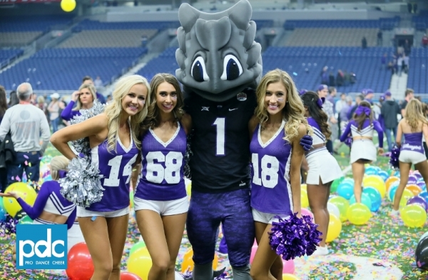 TCU Showgirls Alamo Bowl (1)